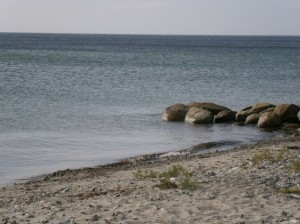 mooie stranden (22)