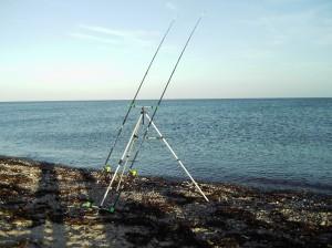 mooie stranden (5)